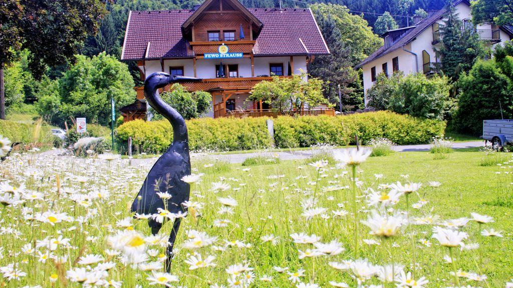 Ferienwohnung Strauss