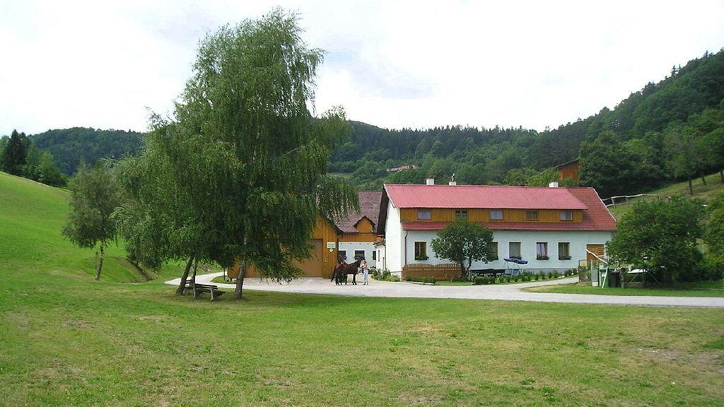 Ferienhof Gruber Schrattenbach