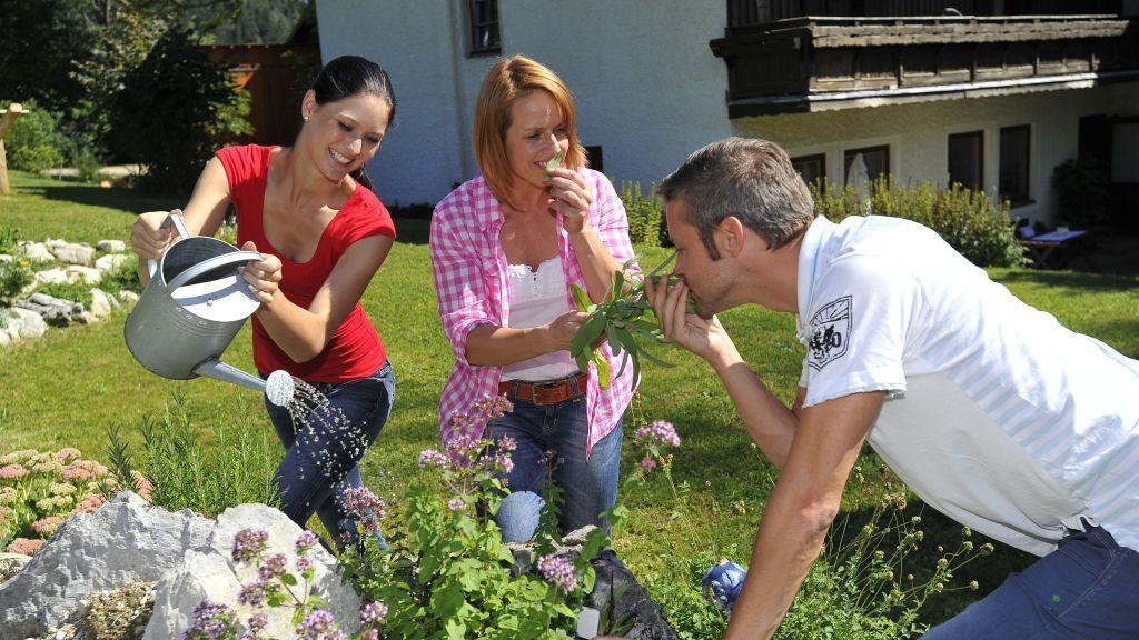 Urlaub am Bauernhof und Privatzimmervermietung in Niederösterreich - Urlaub am Bauernhof & Privatzimmer NOE