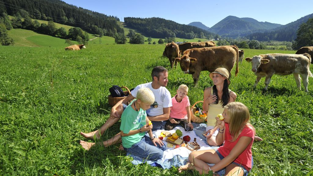 Farmholidays in Lower Austria - Urlaub am Bauernhof & Privatzimmer NOE