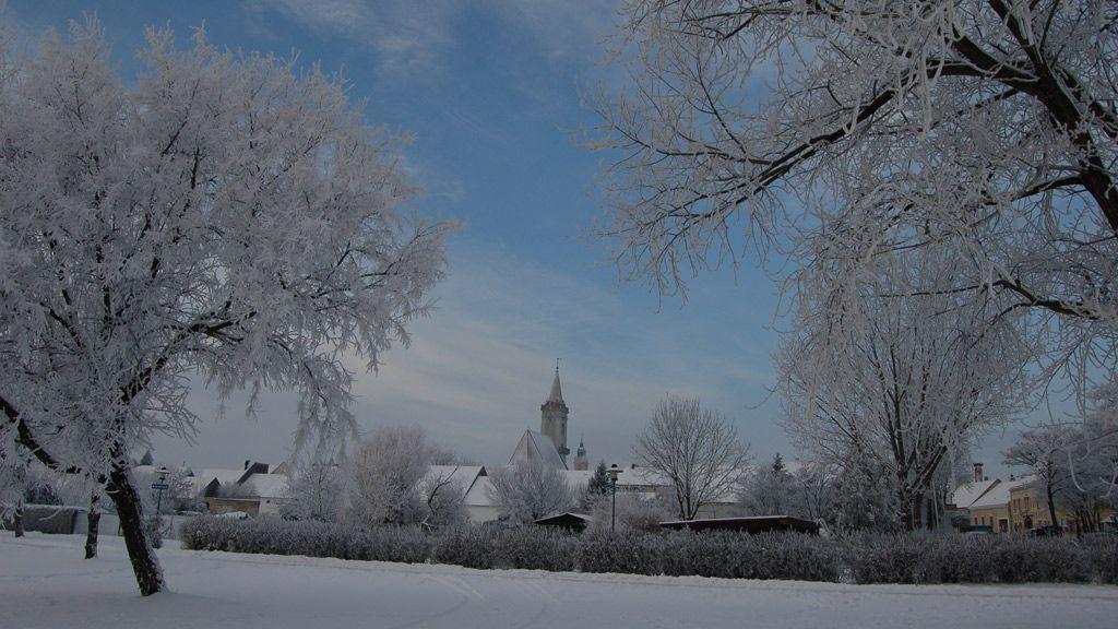 Rust neusiedlersee winter  Holidays Rust, Burgenland | Tiscover