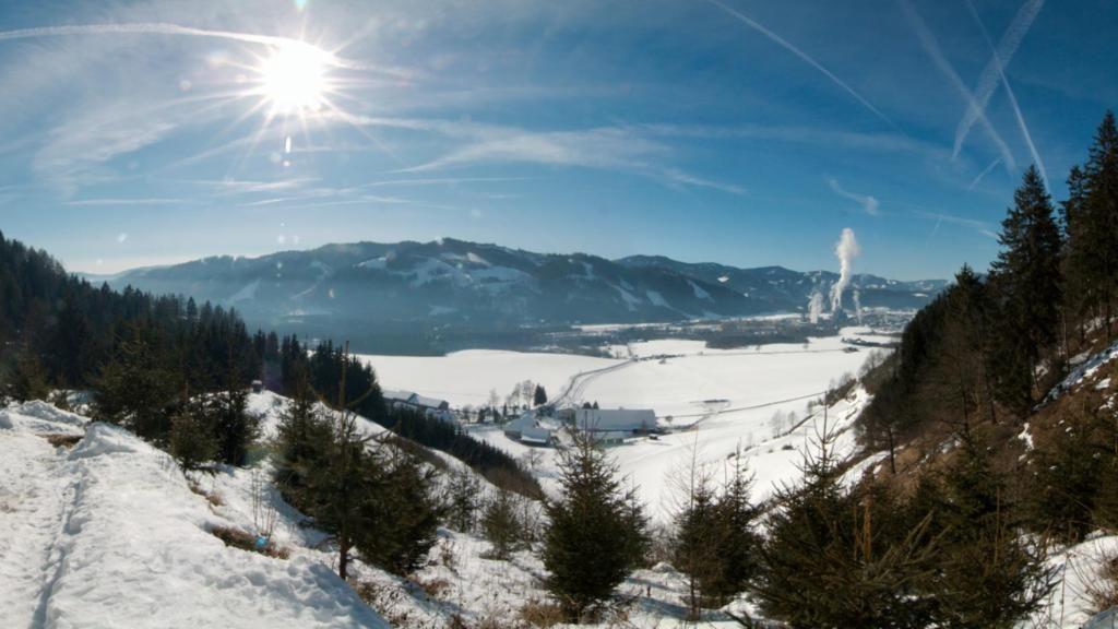 Poels Steiermark