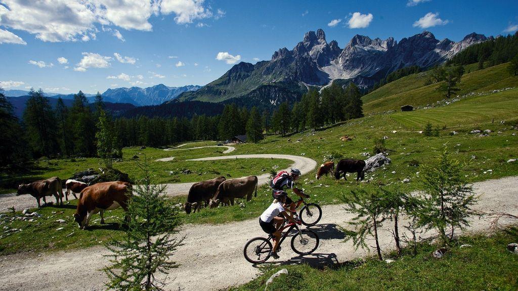 Mountainbiken in Filzmoos - Foto: Österreich Werbung / Himsl