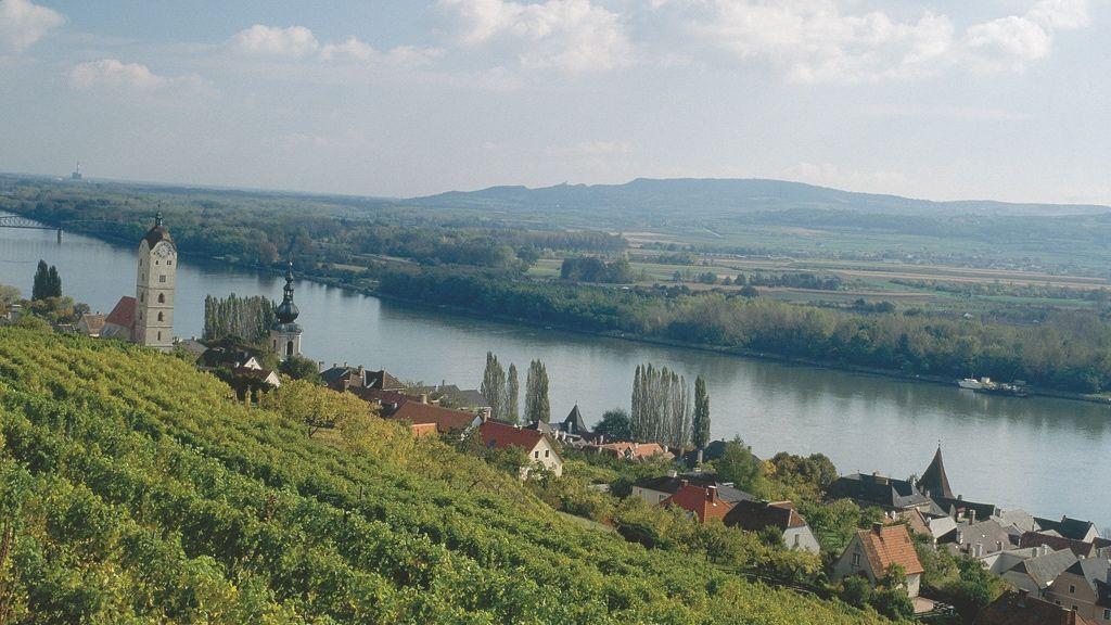Blick auf die Donau © Donau Niederösterreich / Wiesenhofer