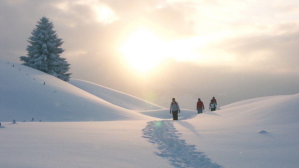 Winterwandern im Kleinwalsertal - ©Hans Wiesenhofer/Vorarlberg Tourismus - Vorarlberg