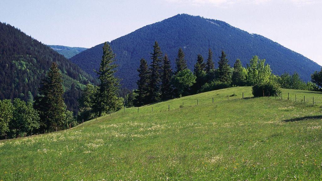 Schneeberg - Foto: Österreich Werbung / Diejun