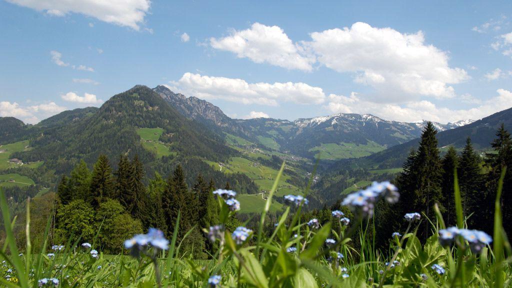 Blick vom Reither Kogel auf Alpbach - Copyright:Alpbachtal Seenland Tourismus