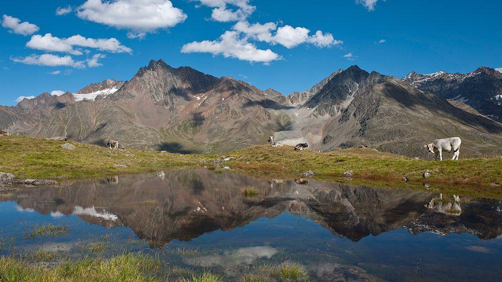 Bergsommer in Tirol - © Tirol Werbung/Matthias Burtscher - Tirol