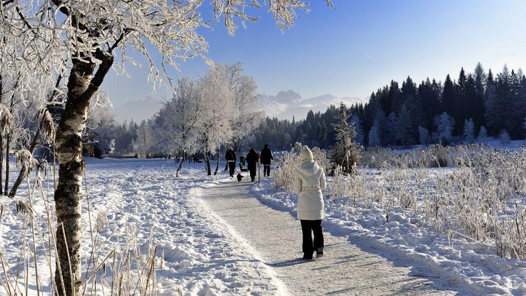 Winterwandern in Seefeld © Olympiaregion Seefeld