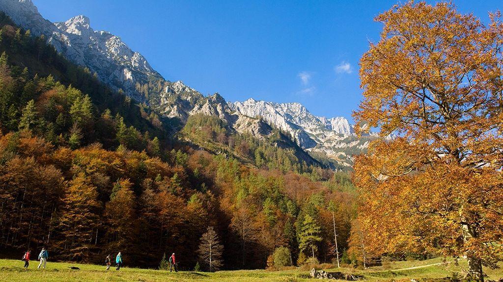 Herbstzauber Bodinggraben - Foto: Nationalpark Kalkalpen Erber