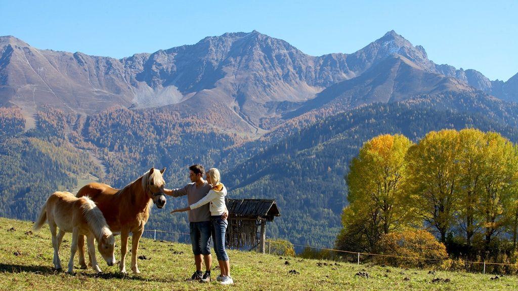 Wandern und Pferde - Copyright: foto-mueller