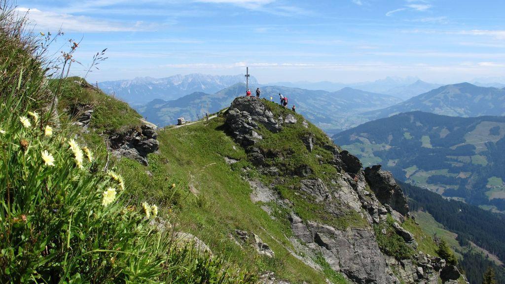 Beliebte Gipfel in der Wildschönau - das Feldalphorn - Wildschoenau (Region) Tirol