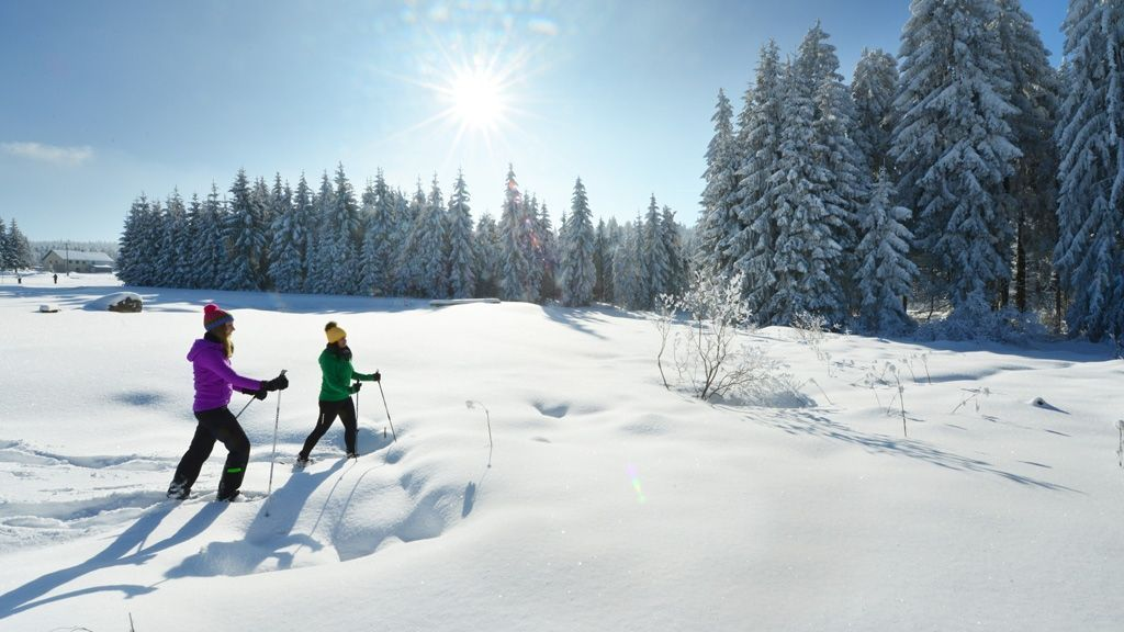 Schneeschuhwandern - Foto:  OÖ Tourismus/ Röbl