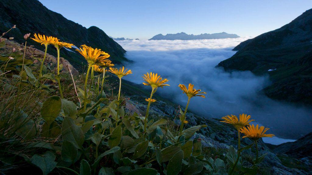 Fasel-Fad Seen - Arlberg Vorarlberg