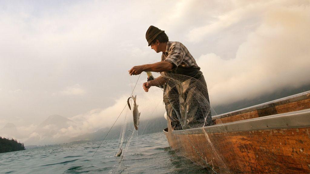 Fischen am Wolfgangsee - © WTG