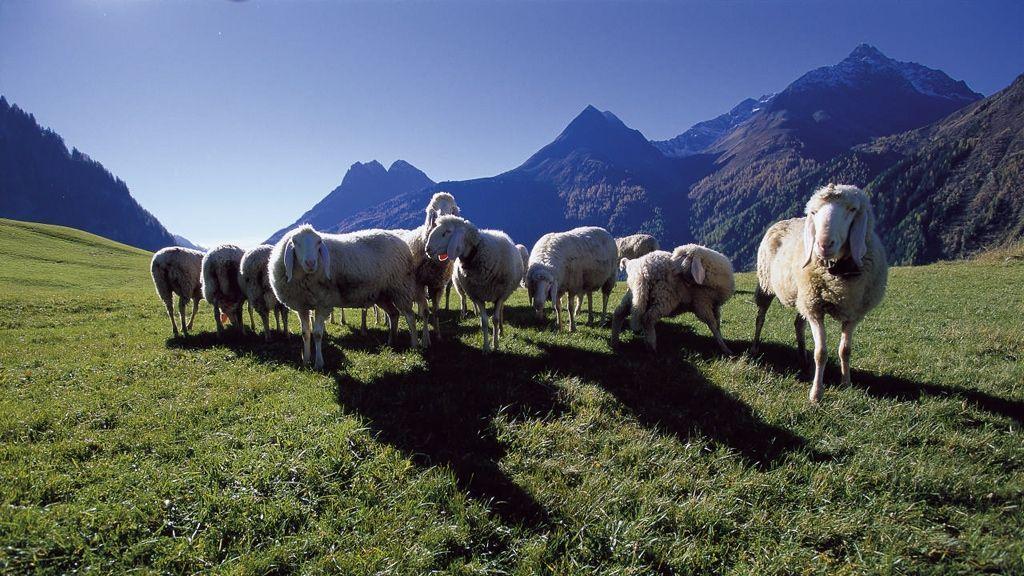 Ötztal - Foto: Ötztal Tourismus / Matthias Burtscher