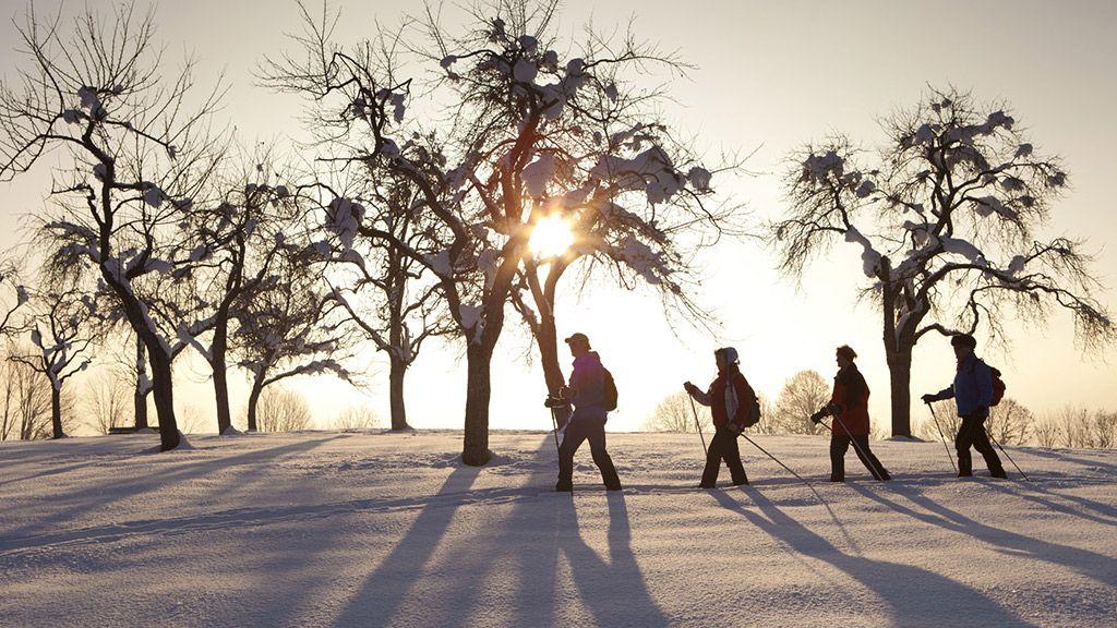 Romantische Winterwanderwege - © TVB Kaiserwinkl/Tirol - Kaiserwinkl Tirol