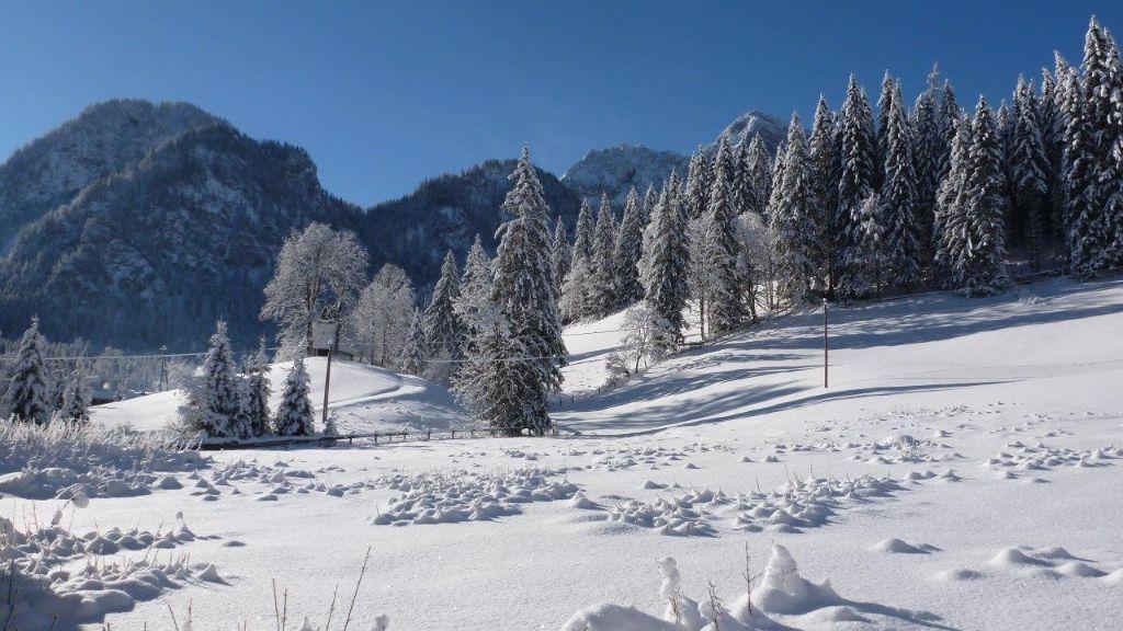 Hinterwildalpen - Wildalpen Styria