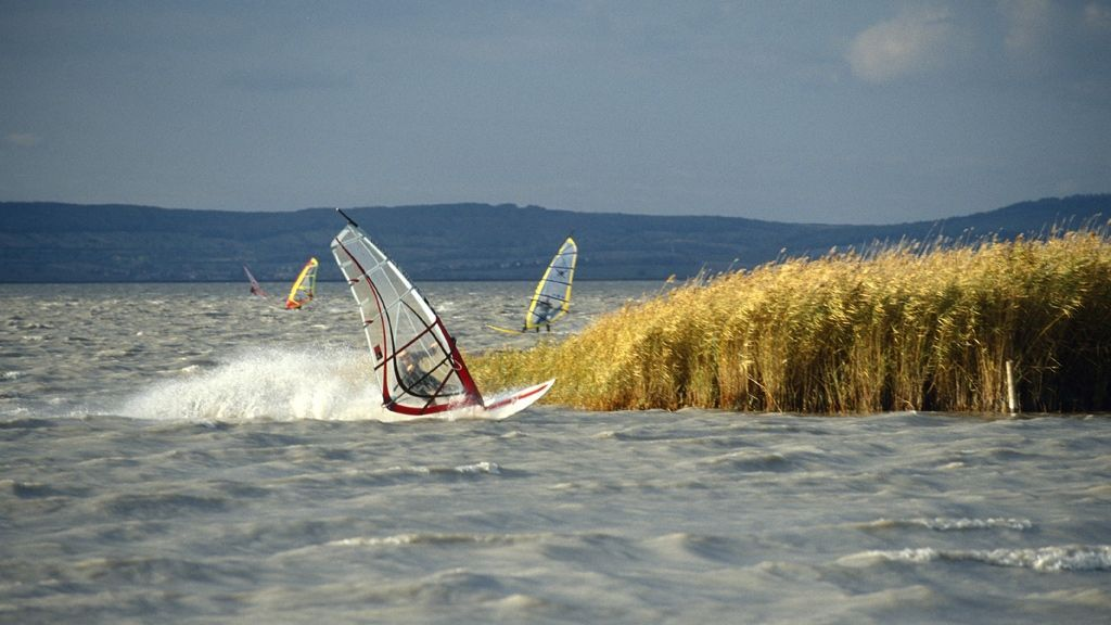 Surfen in Podersdorf am See - Foto: NTG/Andrea Sikorski