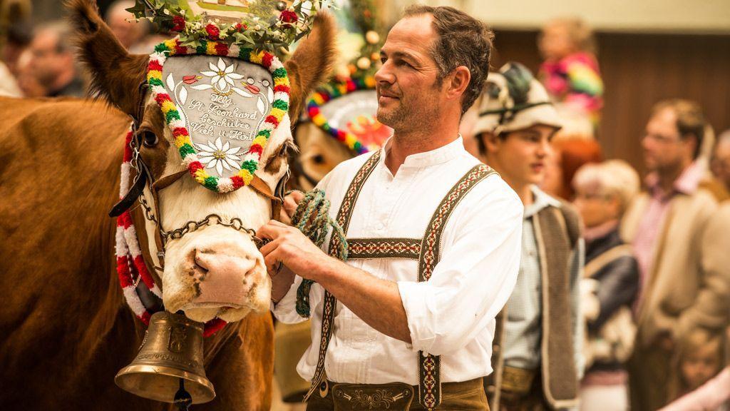 Almabtrieb - © Gasteinertal Tourismus GmbH