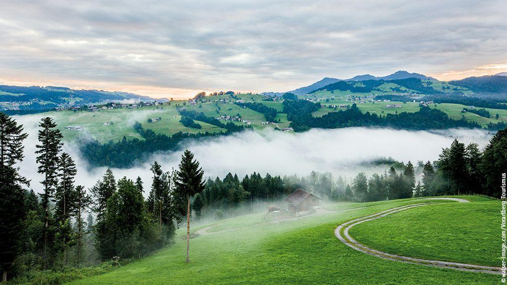 Bregenzerwald bei Müselbach - Bregenzerwald Vorarlberg