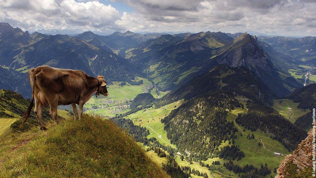 Blick vom Diedamskopf - Bregenzerwald Vorarlberg