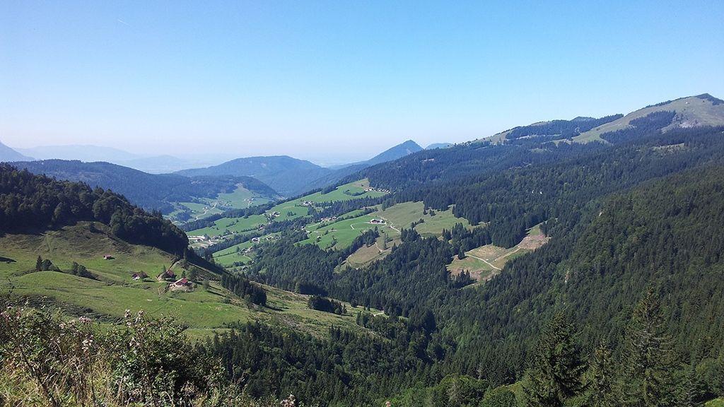 Region Gaissau-Hintersee - Foto: Gaissau-Hintersee