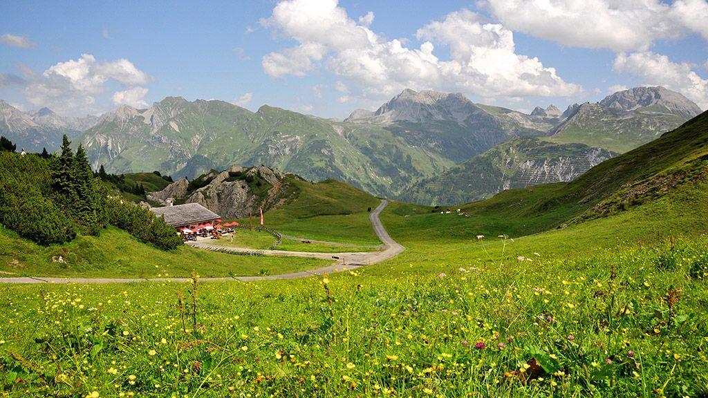 Sommer auf der Kriegeralpe - © Lech Zürs Tourismus - Lech am Arlberg Vorarlberg