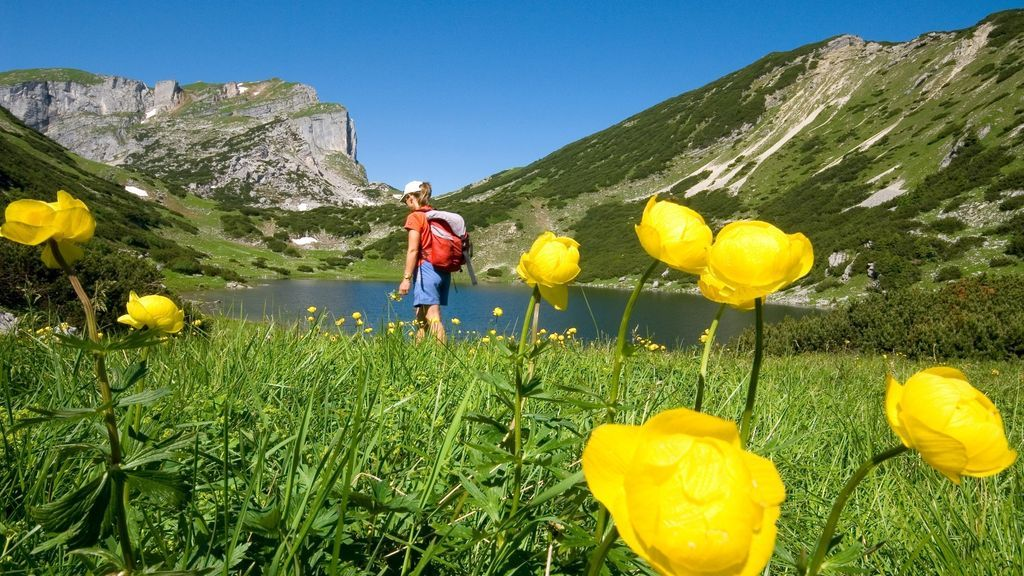 Zireiner See - Copyright:Alpbachtal Seenland Tourismus