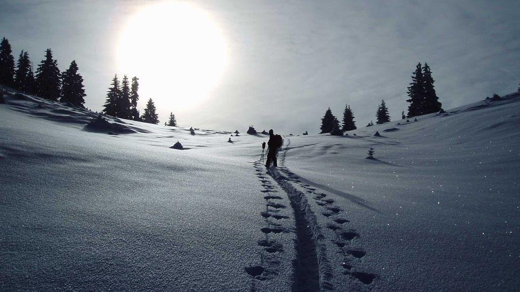 Spuren im Schnee - Fotorechte: Wildschönau Tourismus