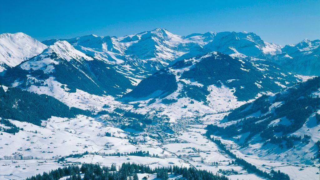 Panorama Gstaad - © Gstaad Saanenland Tourismus
