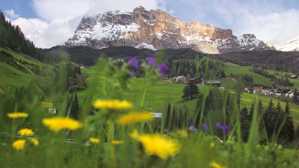 Alta Badia bietet weitläufige Almen und Blumenwiesen für sommerliche Wanderungen vor der Kulisse am berühmten Sellastock. -  Foto: Südtirol Marketing/Ralf Kreuels