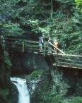 Dr. Vogelgesang Gorge - Bosruck Hut Hiking Trail