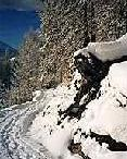 Hiking trail Niederwald-Oberwald