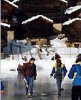 Natural skating rink
