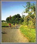 Radfahrer - Heiligenbrunn Burgenland