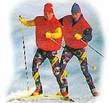 Hartl-Loipe (auch Skating)