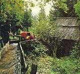 Mühlen- und Kneippwanderweg