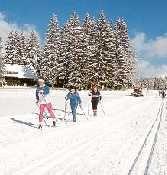 Langlauf gehört zu den schönsten Wintersportarten - perfekt in Grafenhausen möglich, da der Ort viele Lopien bietet und auf einem Hochplateau liegt - Grafenhausen Baden-Wuerttemberg