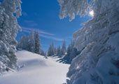 Geführte Schneeschuhwanderungen