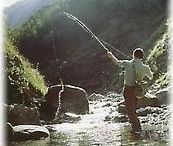 Fishing in the river Inn