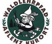 Waldlehrpfad Piererkogel