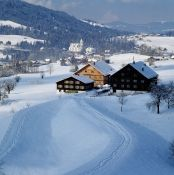 Holidays on a Farm in Vorarlberg Homepage Image # - Urlaub am Bauernhof in Vorarlberg