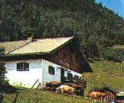 Lehrbergalm-Winterstelleralm-Schartental
