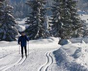 Map of Nordic Ski Trails