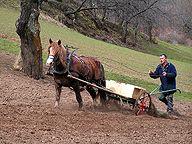 Familien - Abenteuer auf dem Bauernhof