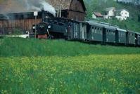 Steyrtal-Museumsbahn - Steyrtal Oberoesterreich
