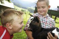 Urlaub am Bauernhof - Urlaub am Bauernhof im SalzburgerLand!