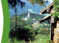 Glashüttenweg (5,3 km)