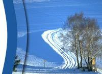 Böhmerwald-NordischesZentrum: Einstieg Oberhaag